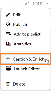 "A screenshot showing the user having clicked on ""Actions"" and hovering over ""Captions & Enrich"" which is outlined in orange."
